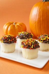 "<img src=""halloween cupcakes.jpg"" alt=""chocolate halloween cupcakes with pumpkins "">"